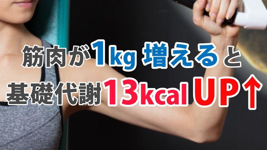 筋肉が1kg増えると基礎代謝が13kcal増える